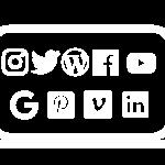 Social media def trans wit